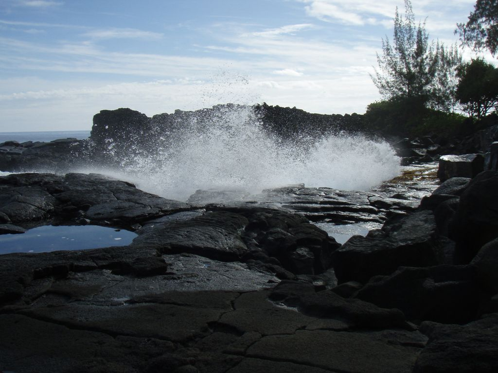 Nearby tidepools to explore!
