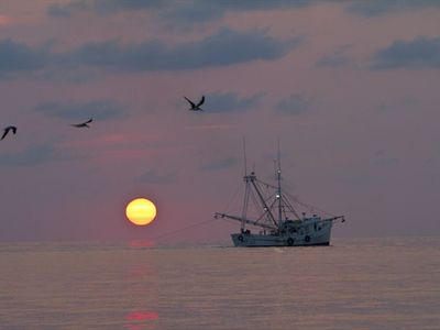 View of Shrimp boat at sunrise in St. Helena Sound