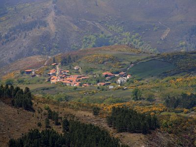 House of picotinhos - The charm of nature