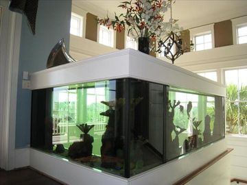 450 gallon Aquarium!