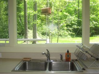 lovely scenic view from the sink - Great Barrington property vacation rental photo