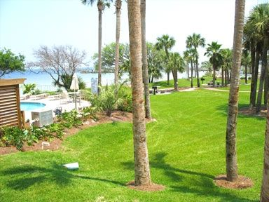 View from our patio- bay left, private pool, charcoal grills and picnic tables.