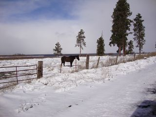 Klamath Falls cabin photo - Spring time brings a dusting of snow. Horse backing is a local activity.