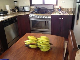 Dominical house photo - Fresh bananas & lemons when in season