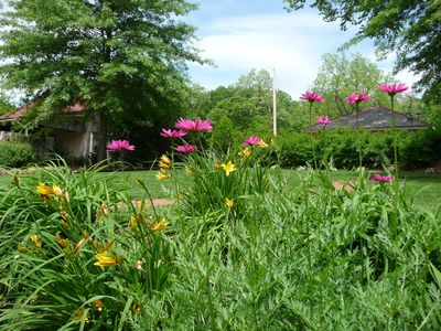Backyard behind the cottages.  Pet friendly vacation rental