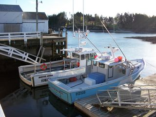 Harpswell house photo - Lobster boats at the wharf.