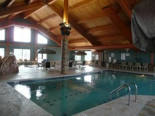 Wisconsin Dells cabin photo - Indoor pool available all year long