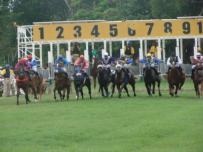 Rockley apartment rental - How about a day at the Races ?