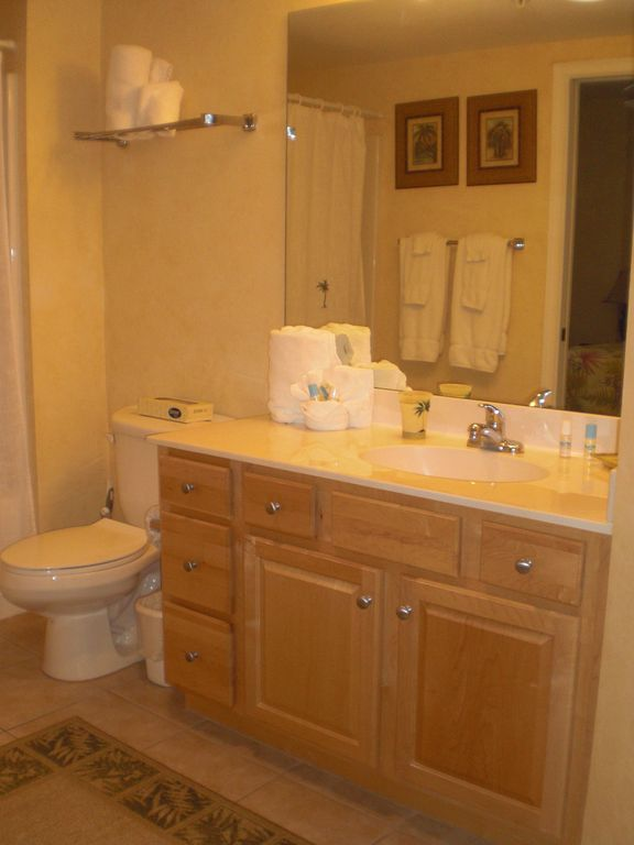 Large bathroom with hairdryer, shampoo, soap and paper products.