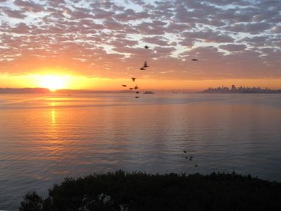 Sunrise from the bedroom - Seagulls & Pelicans provide daily entertainment
