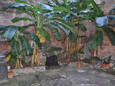 New Orleans townhome rental - Outdoor courtyard