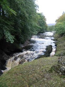 Edzell apartment rental - River North Esk perfect for fishing