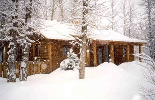 Driggs cabin photo - Teton Valley Winter