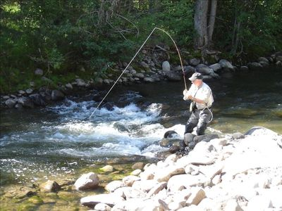 Fly fish on 700 feet of private river steps away from your deck. (Actual guest)