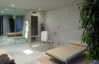 The Master Bath from its private terrace.