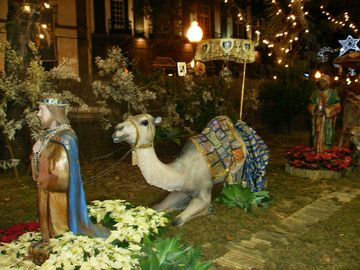 Christmas Display-
