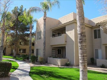 Chandler condo rental - .