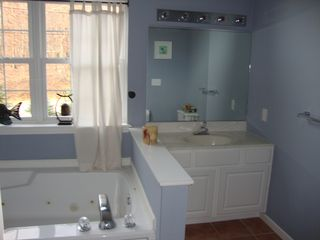 Bushkill house photo - Master bathroom