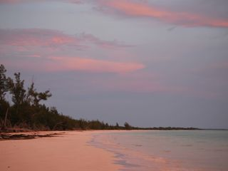 Grand Bahama Island villa photo - The Pastel Colors of Grand Bahama Island