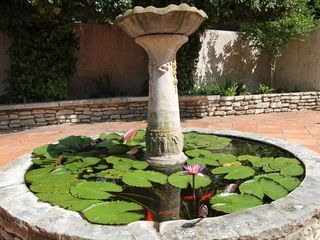 Fredericksburg house photo - Fish Pond