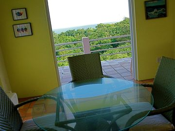 Mimosa House Pool Level - Image 12 - Vieques - ren