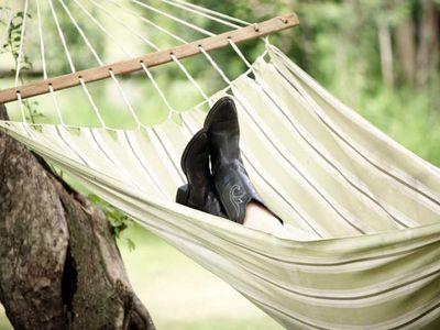 Relax in one of three hammocks on the property