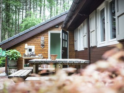 A comfortable chalet in the woods, beside a protected nature reserve.