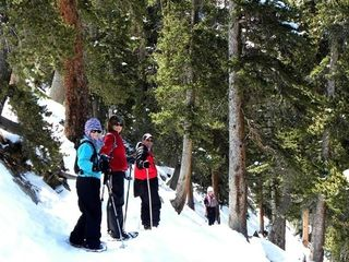 Evergreen cottage photo - Snow Shoeing the Close by Maxwell Falls National Forest Trail