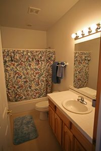 Basement full bathroom.