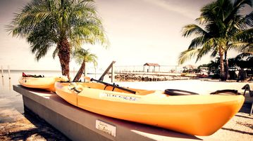 Kayaks for you to enjoy