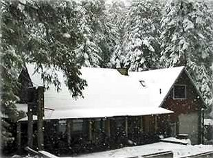 Wintertime at Our Spacious Cabin! Sledding, skiing, snowshoeing, ice skating...