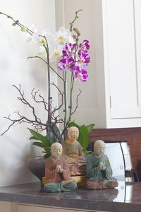 Praying Monks Kitchen Orchid
