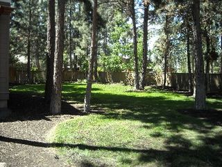 Bend house photo - This yard is like a park setting. Beautiful, relaxing environment.