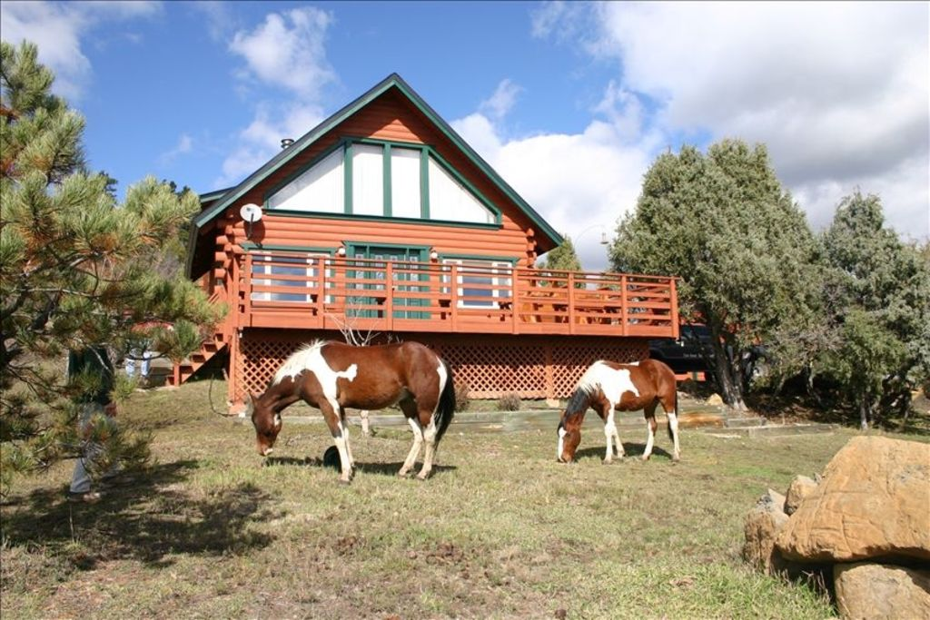 Beautiful Log Home On Five Acres With Horse Facilities