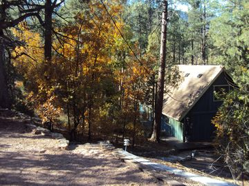 November 2011 - Cabin drive and walkway
