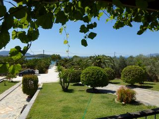 Evia cottage photo - the view from the veranda