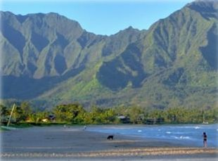 Hanalei Bay: 2 minute walk from the house