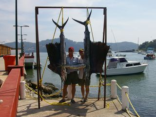 Zihuatanejo condo photo - Catch of the day!