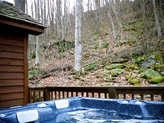 Canaan Valley chalet photo - Hot Tub on its own private deck