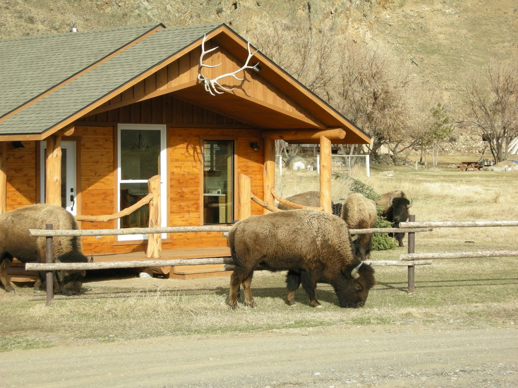 Electric peak cabin at yellowstone park homeaway gardiner for Cabin yellowstone park