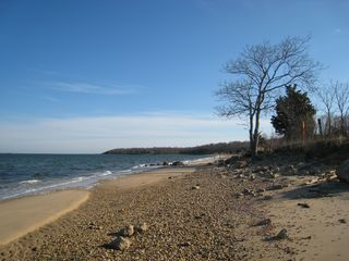 East Hampton house photo - nearby Bay Beach - great for long walks : even has tree for shade