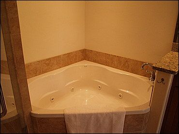 Master Bath - Jacuzzi Tub & Shower