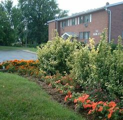 Rochester apartment photo - Apartment and grounds are well landscaped