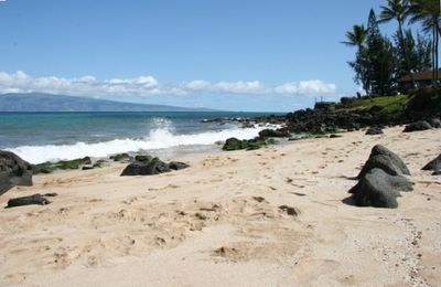 Private access to sandy beach (north side) - sea turtles have the right of way
