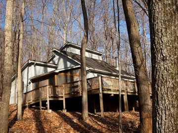 Berkeley Springs cottage rental - TREETOP COTTAGE: GREAT SETTING, COMFORTABLE, WELL APPOINTED.