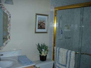 Hutchinson Island apartment photo - Walking Shower