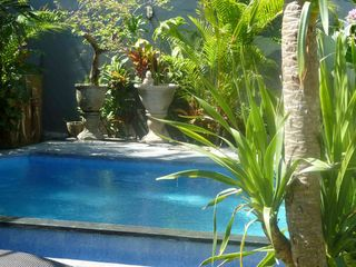 Seminyak villa photo - Just dive in