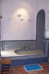 San Miguel de Allende house photo - The Fish or Blue bathroom and Tub.