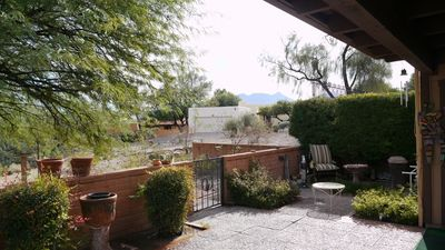 back yard mesquite and mountains