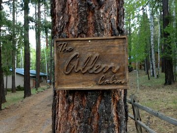 Greer cabin rental - The beautiful Allen Cabin. Nestled in aspen and pine trees.